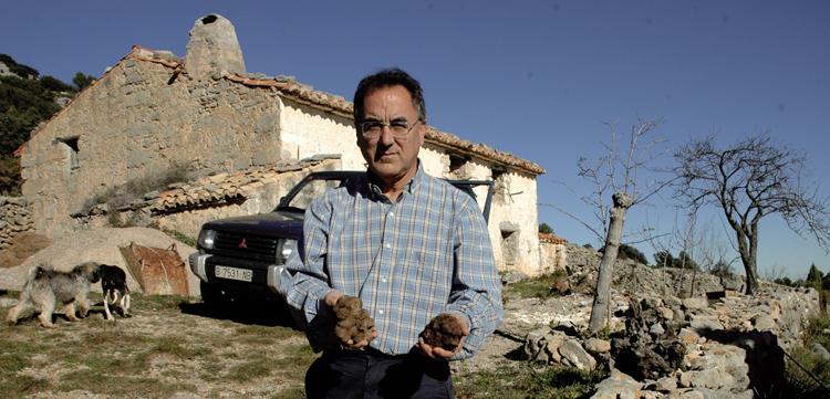 trufas en la masia de Atzeneta del Maestrat